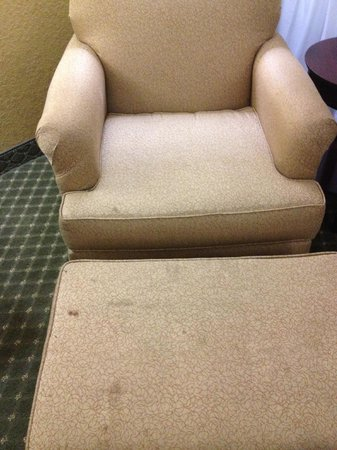 Holiday Inn St. Petersburg North / Clearwater: Stained chair and ottoman