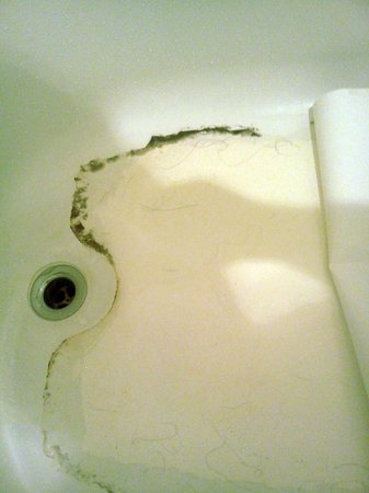 Quality Inn Central: Grime and hair under bath mat