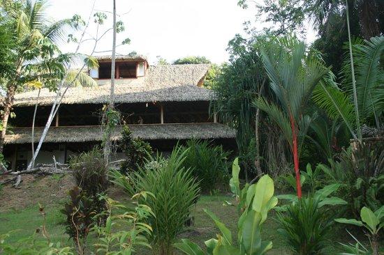 Copa de Arbol Beach and Rainforest Resort: Restaurant