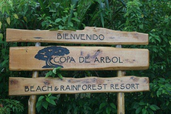 Copa de Arbol Beach and Rainforest Resort: Copa de Arbol