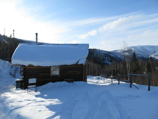 Chena Hot Springs Resort: Aurorium - warming cabin