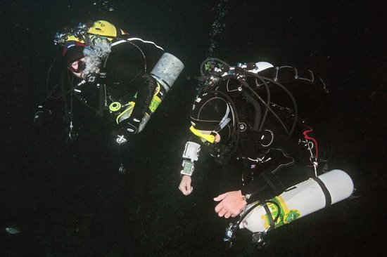 New Zealand Diving Photo