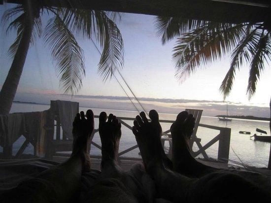 فا - إي - موانا سي سايد لودج: Happy Feet
