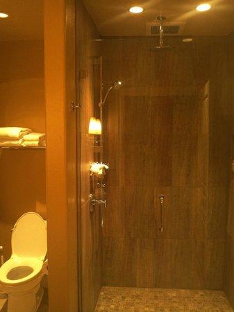 Eden Vale Inn: elegant shower.