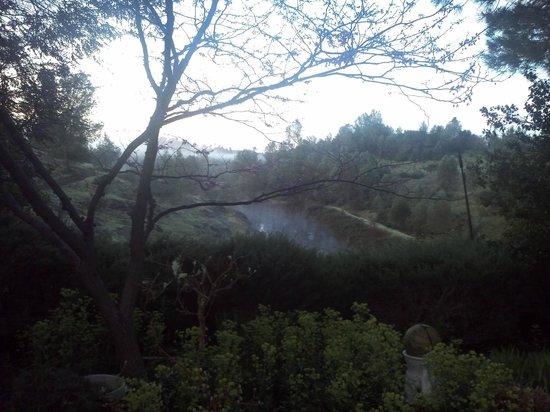 Eden Vale Inn: Misty morning view