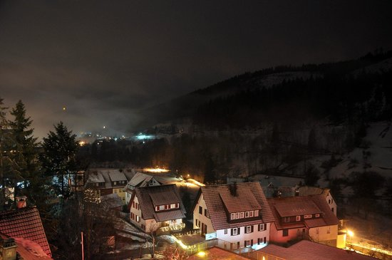 Wellnesshotel Tanne: The Black Forest view from our balcony