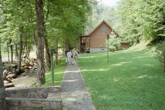 Lands Creek Log Cabins: Pathway to other cabins