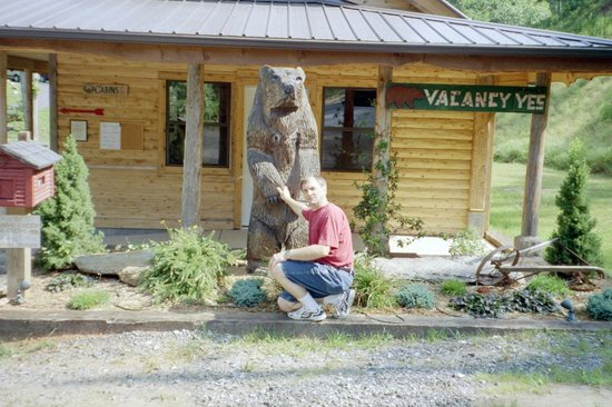 Lands Creek Log Cabins: The bear!
