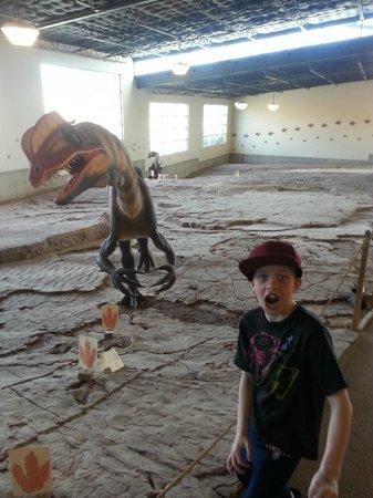 St. George Dinosaur Discovery Site at Johnson Farm: Dino Tracks