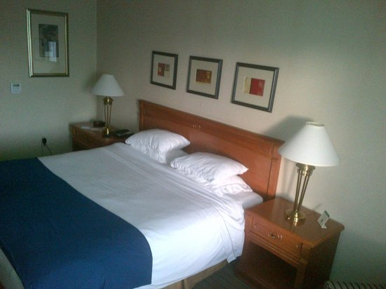 Holiday Inn Express & Suites - Guelph: king size , 4 pillows