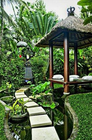 Villa Sancita: Garden