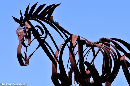Adobe Guadalupe Vineyards & Inn: Horse sculpture
