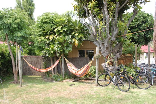 Sunkist Guesthouse: Hammocks and the garden