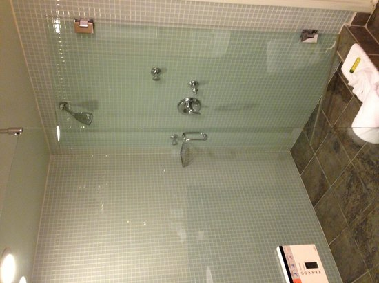 Doubletree Hotel San Diego Downtown: The Shower