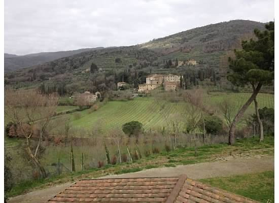 Le Capanne Agriturismo: The view from the upstairs unit.