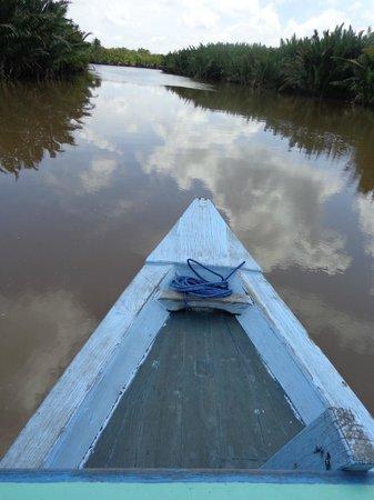 Wild Orangutan Tours - Day Tours: our klotok on the river