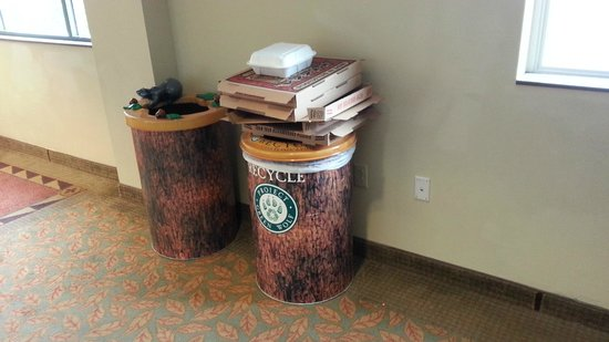 Great Wolf Lodge: Pizza Boxes Accumulating By The Elevator