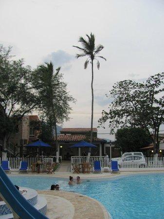 Hosteria Fundadores: Solo palm tree