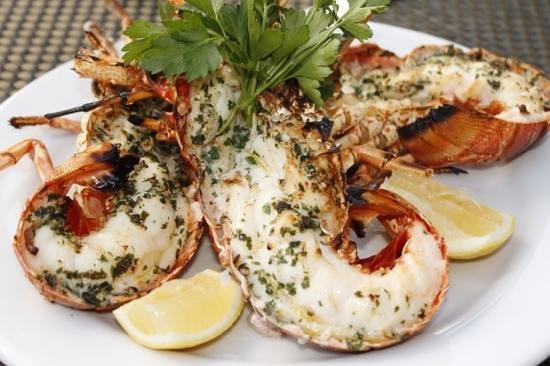 Altamare Lobster Delicious