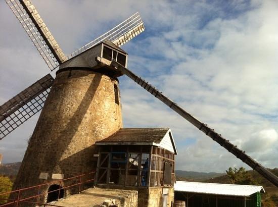 Sunday Scenic Tours: Windmill