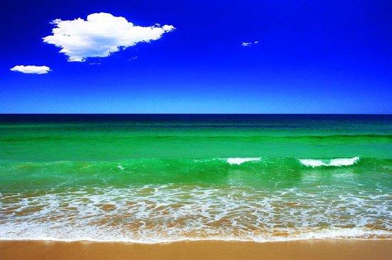 Noahs @ Bondi Beach