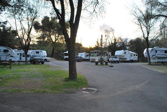 49er RV Ranch: The RV corral