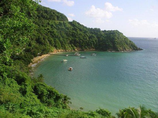 Batteaux Bay Photo
