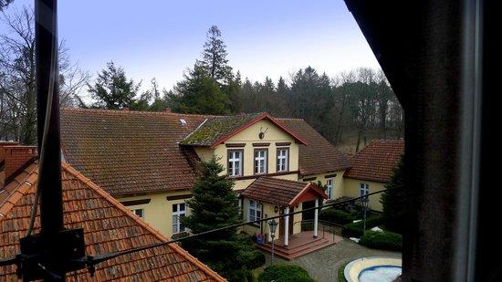 Lesny Dwor Hotel : Widok na budynek główny
