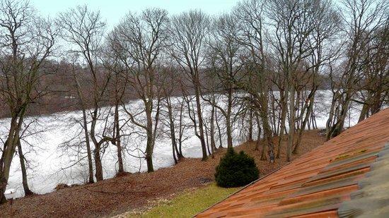 Lesny Dwor Hotel : Widok z pokoju na jezioro
