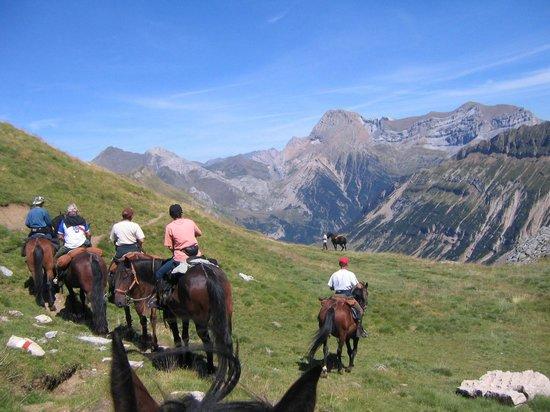 Auberge Cavaliere : Randonnées à cheval en montagne depuis l'Auberge Cavalière Pyrénées