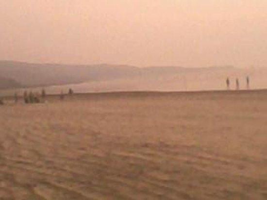 Diveagar Beach: Beach