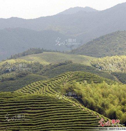 Tianmu Mountain