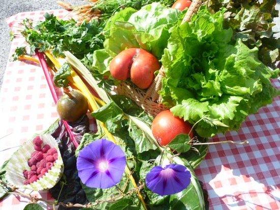 Auberge Cavaliere : Panier au retour du jardin