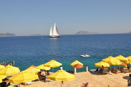Aquarius Hotel: Beach