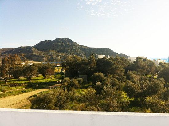 Emilia Apartments: View to east