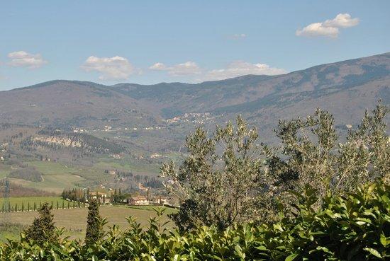 B&B Oliveto Country: Vista sul Pratomagno