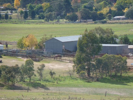 Barcoos Farmstays Bathurst: View from the hill to the accom