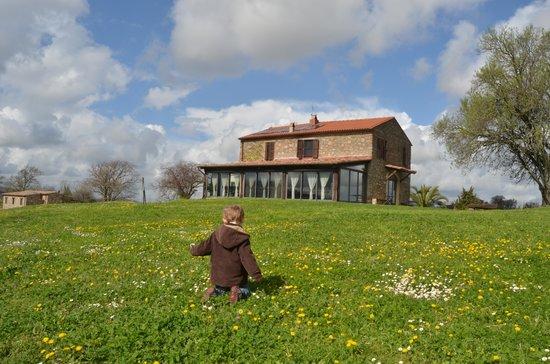Azienda Agrituristica Bio Le Macchie Alte: prato fiorito