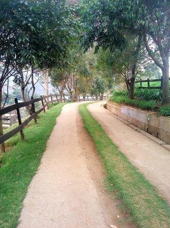 Destiny Farmstay: pathway leading to horse ride and stables