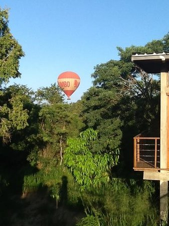 the beautiful view of the bush from our villa!����