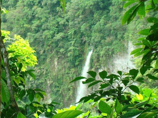 Leyte Island, ฟิลิปปินส์: guinaniban falls.....