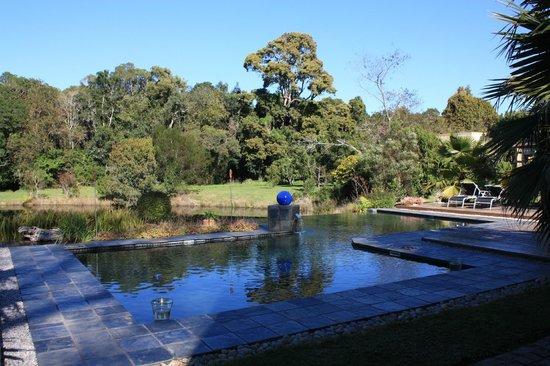 Lily Pond Country Lodge: Seerosenteich und Pool