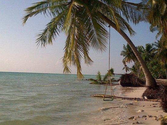 Reveries Diving Village : Reveries private beach