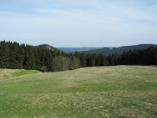 Sporthotel Oberhof: Der Thüringer Wald in seiner ganzen Pracht