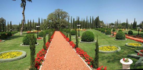 Bahai Gardens  and Shrine: Vista3