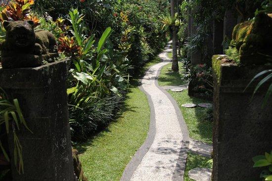 Sahadewa Resort & Spa: Gezien vanaf ontbijtzaal.