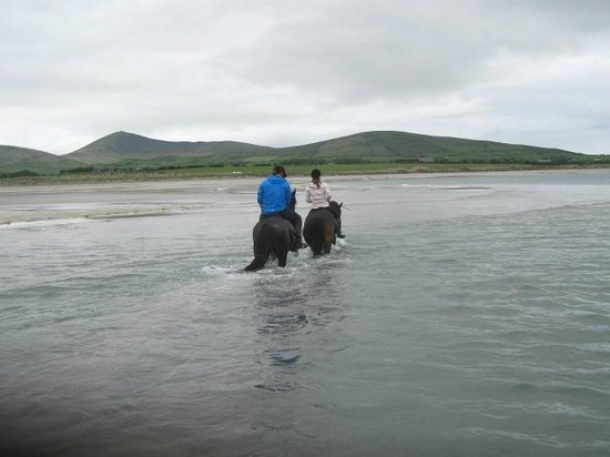 Long's Horse Riding: riding on the beach