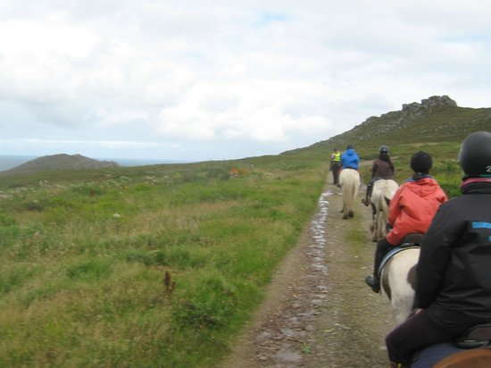 Long's Horse Riding: one of trails