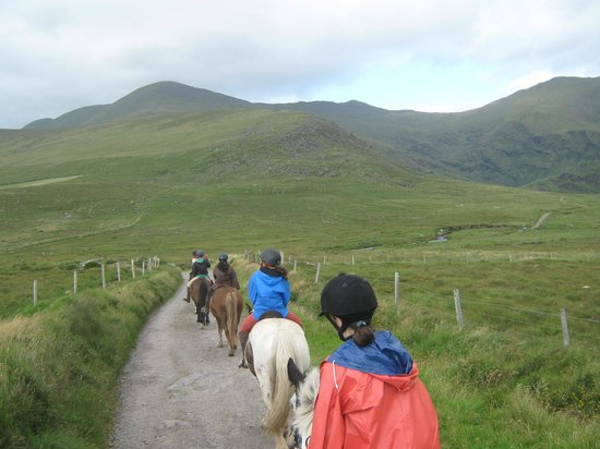 Long's Horse Riding: view of the hills