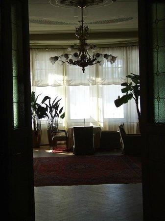 Ammende Villa: Drawing Room